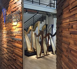 Rave Harps Singapore