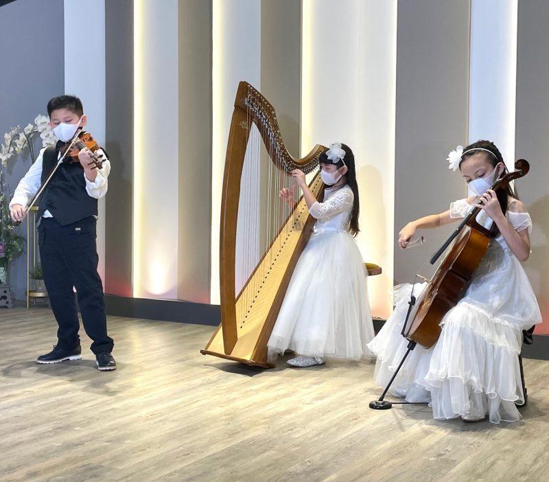 Rave Harps International Prestige Awards