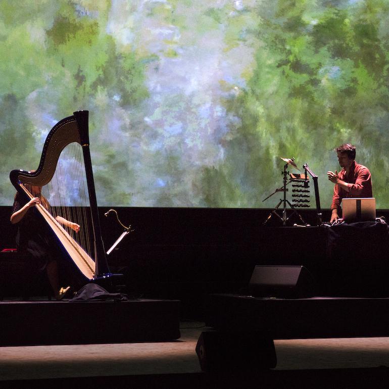 Une harpe bleue au congrès mondial de la nature